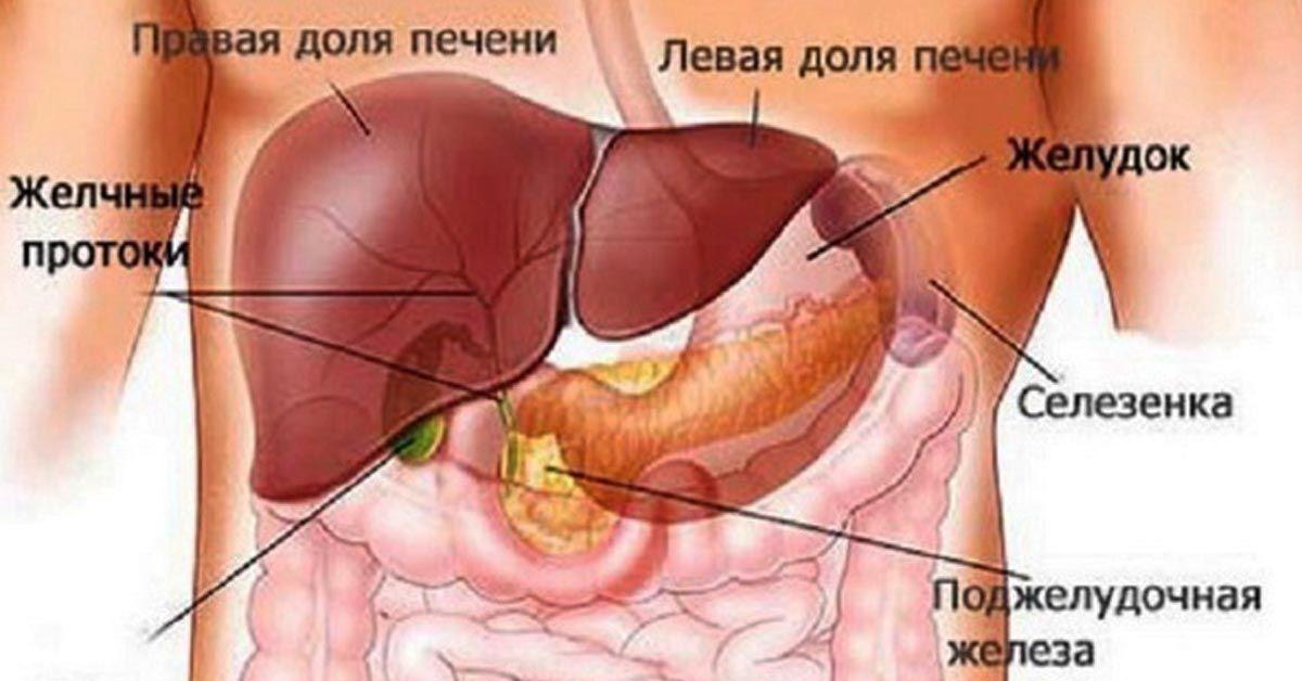 cancerul mamar metastatic papilloma virus vaccino ai maschi