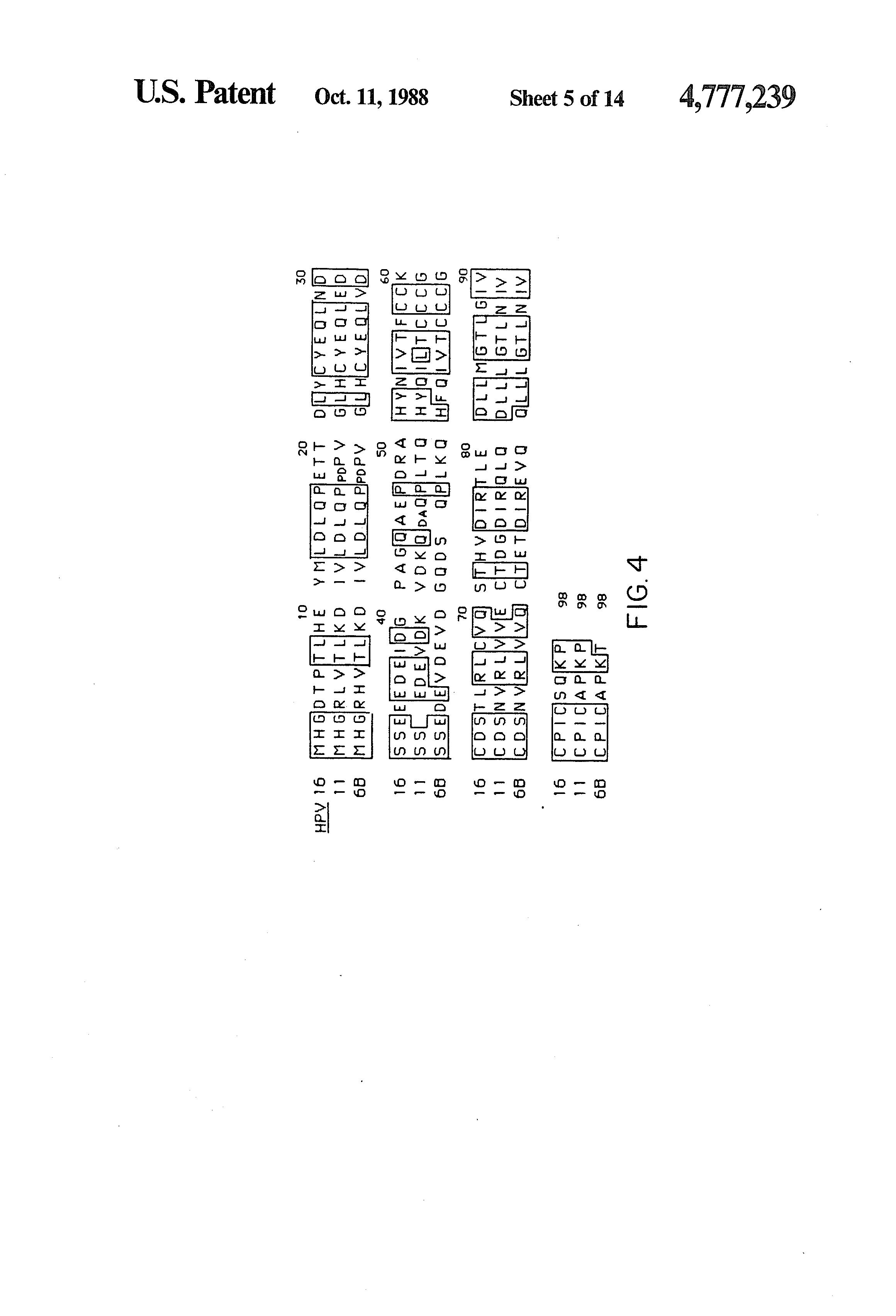 humanen papillomavirus (hpv 16 und 18)