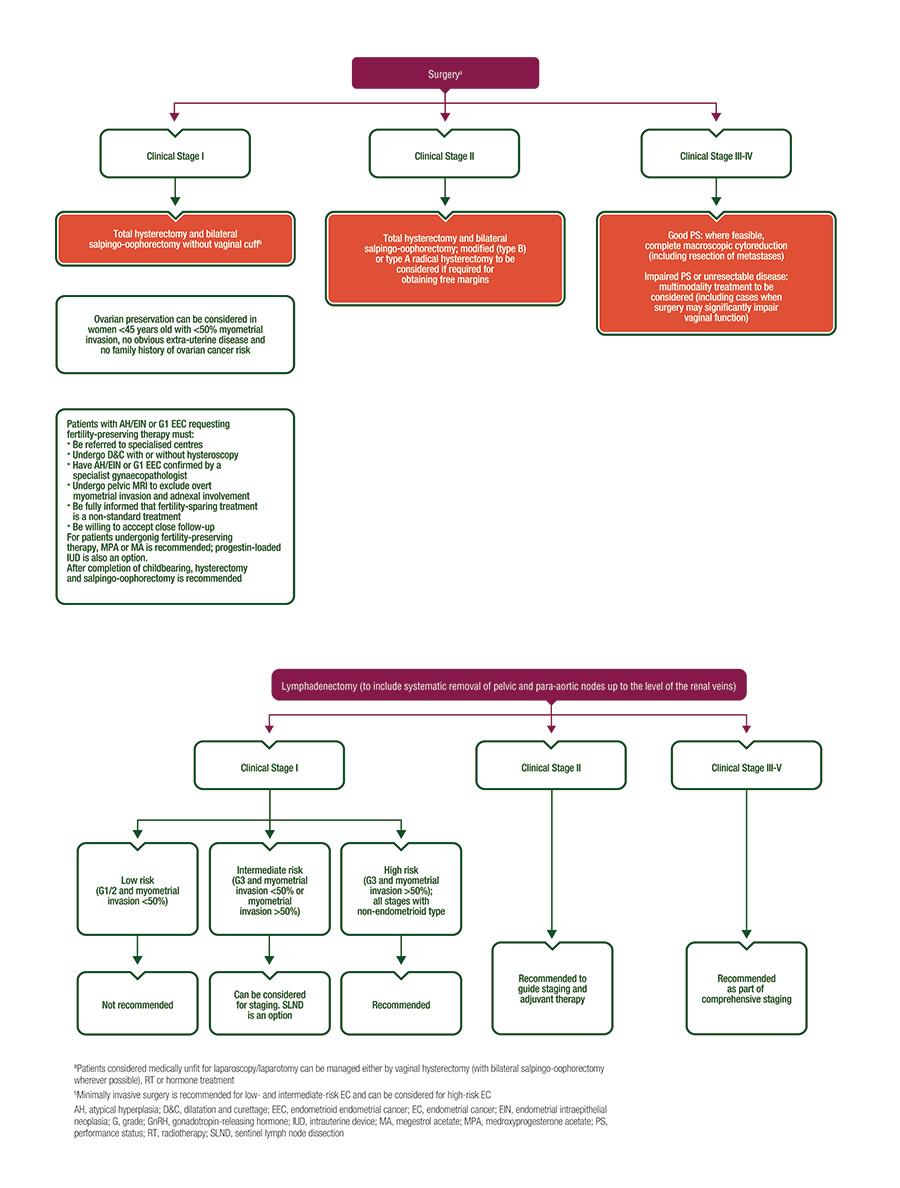 ovarian cancer esmo