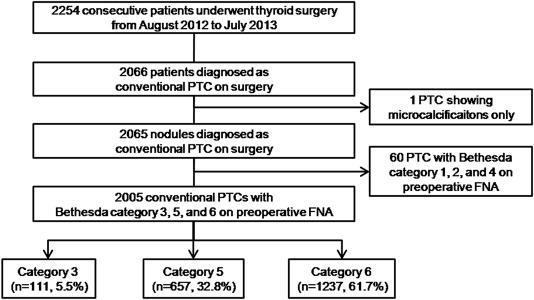 papillary thyroid cancer bethesda 6 papilloma utero uomo