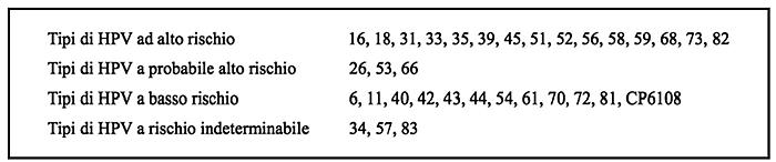 papilloma virus a basso rischio meaning of papilloma in marathi