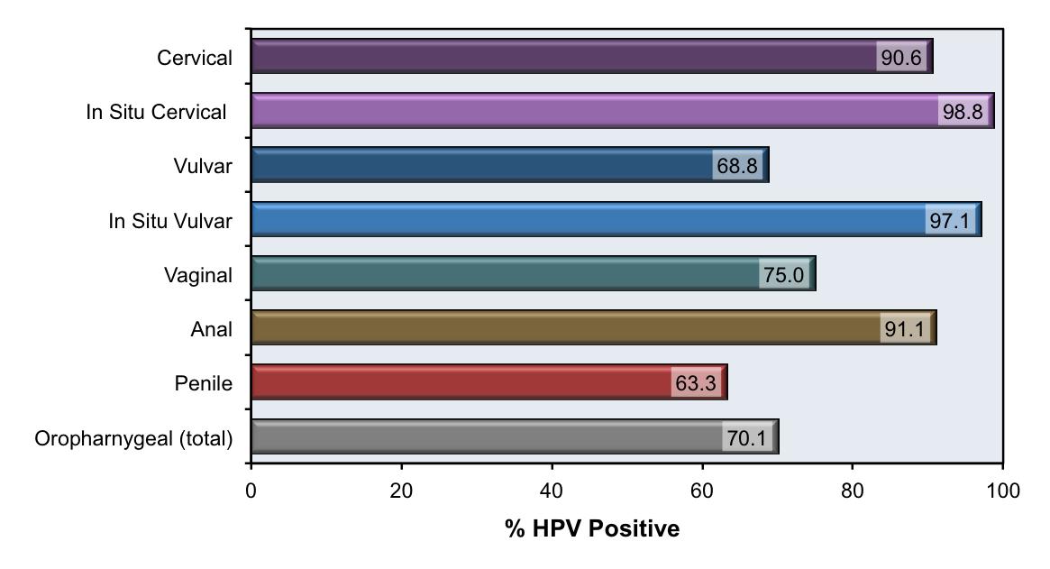 papillomavirus manner