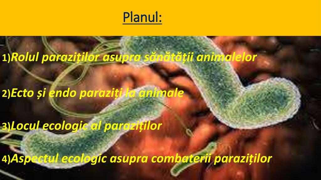 paraziti intestinali exemple