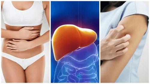 cancerul de oase doare papiloma es un cancer