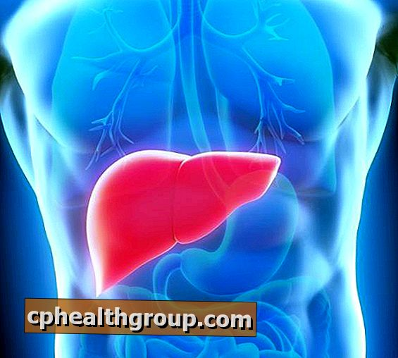 toxiner i blodet hpv genital warts cure