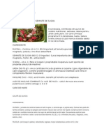 human papilloma types