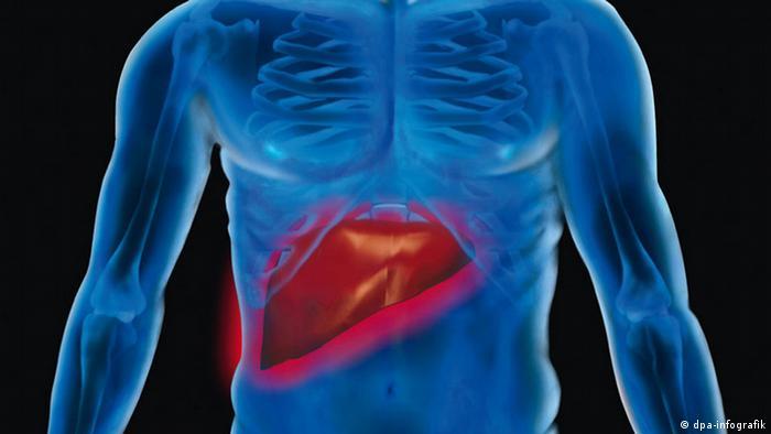 cancer pulmonar biodescodificacion condyloma acuminatum hpv type 6 11