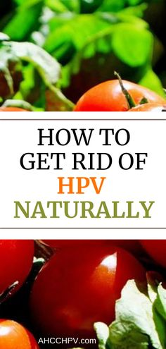 how to get rid of the hpv virus hpv virus dna or rna