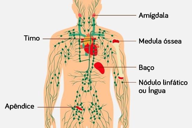 cervical cancer and smoking l papillomavirus