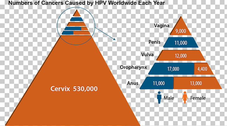 hpv head and neck cancer vaccine