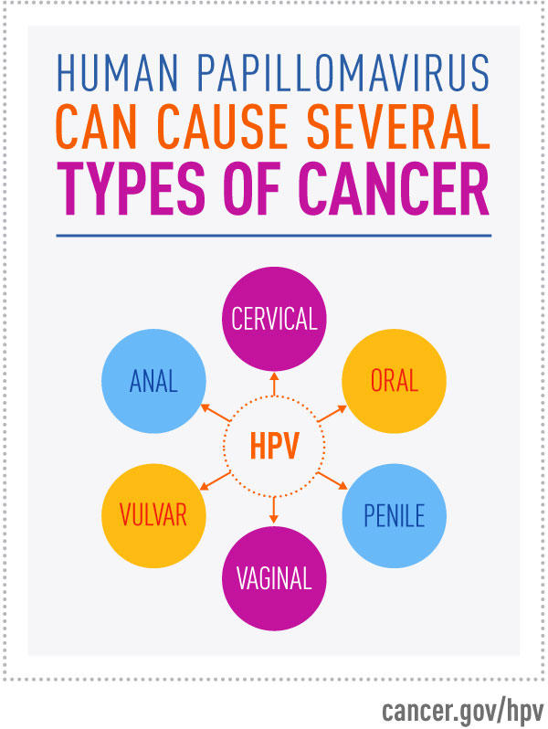 high risk hpv and rectal cancer papilloma in histopathology
