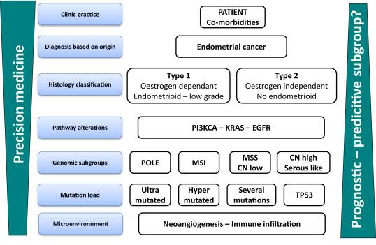 uterine cancer hormone therapy anthelmintic drug mebendazole