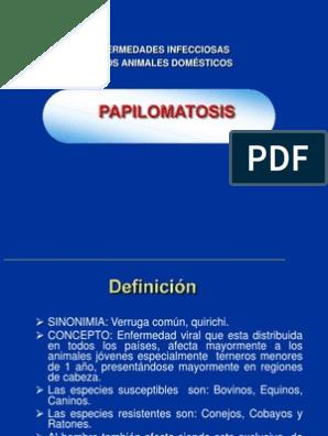 que es la papilomatosis definicion cancerul her2 pozitiv