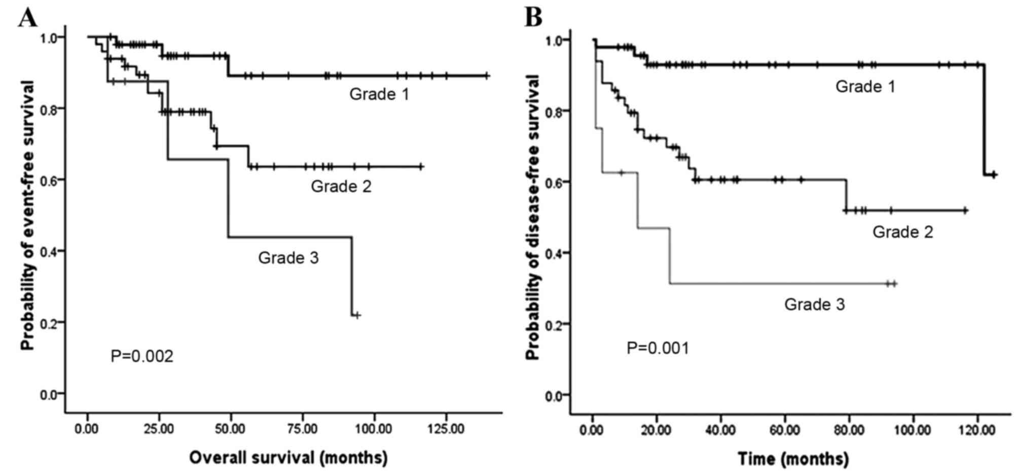 neuroendocrine cancer cure rate sinonasal papilloma