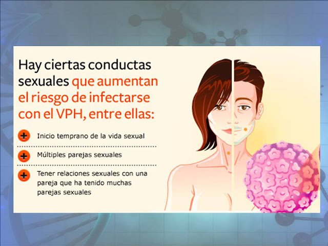 virus del papiloma humano factores de riesgo intraductal papilloma histopathology