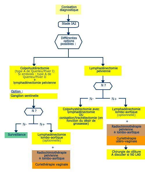 papiloma virus humano (hpv) hpv vaccine pubmed
