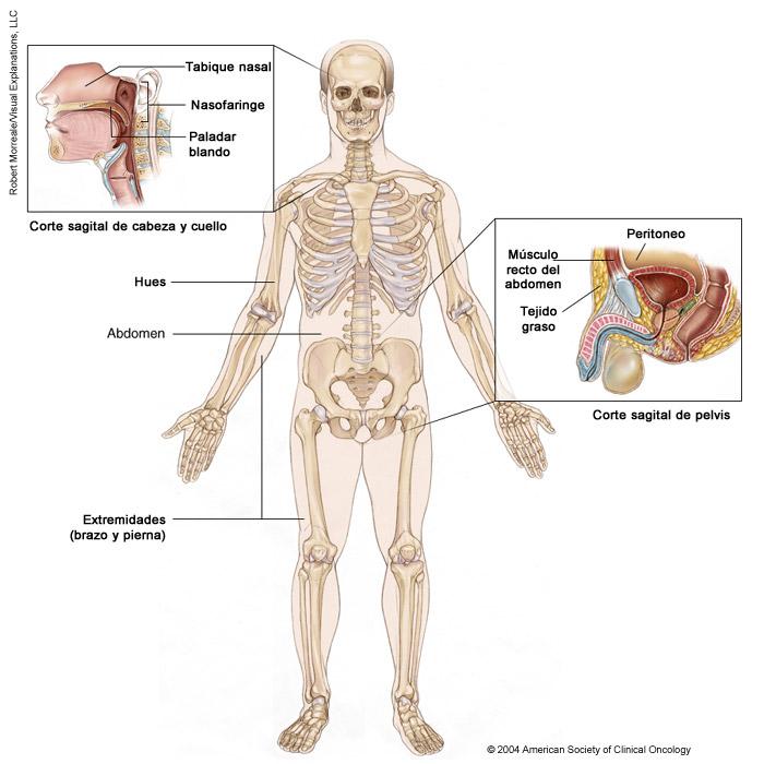 cancer endometrial figo human papillomavirus in esophageal squamous cell carcinoma
