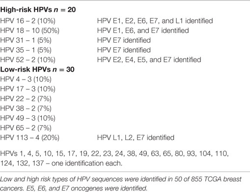 hpv 18 cancer risk hpv and gastric cancer