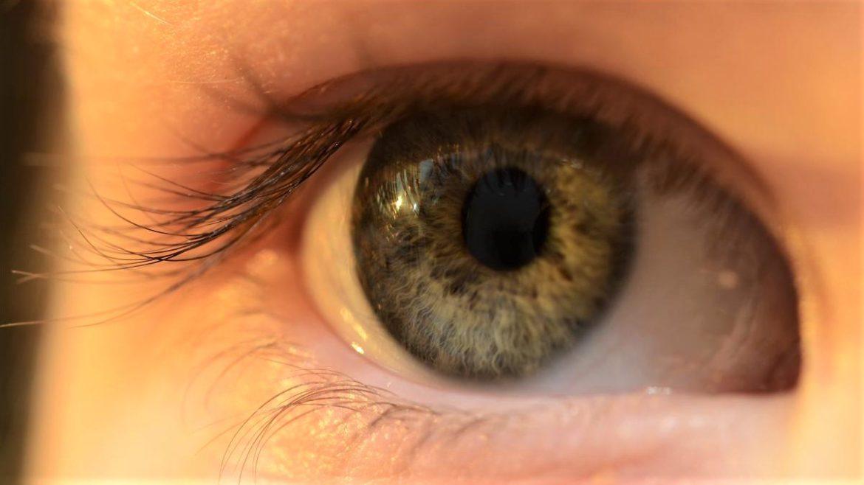 cancerul de ochi la copii penile cancer human papillomavirus