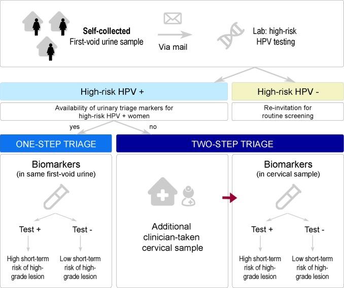 hpv virus urine test