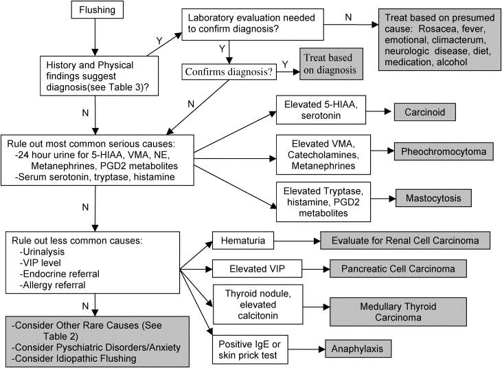 neuroendocrine cancer workup testicular cancer vs epididymal cyst