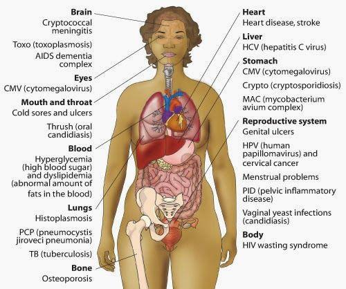 human papillomavirus symptoms in urdu cancer la san in timpul alaptarii