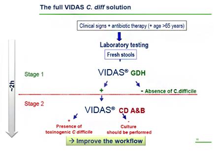 hpv vaccine pregnancy