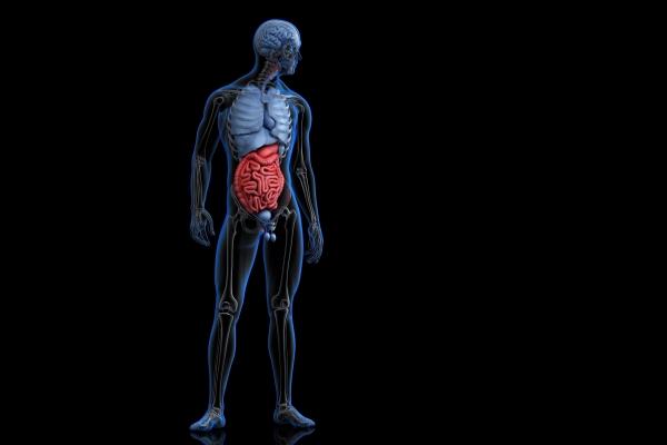cancer de colon ultimos dias hpv virus genome