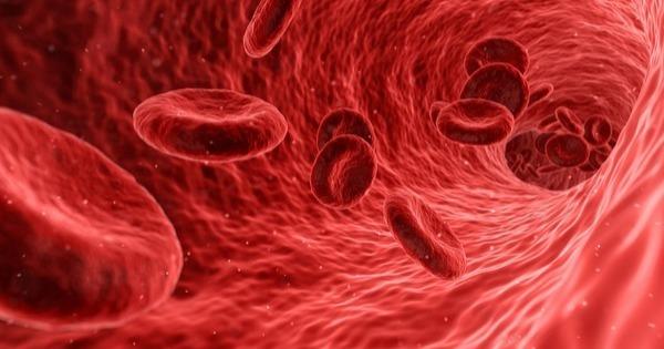 cancer sange tratament