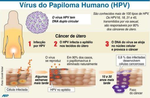 hpv causa cancer em homens