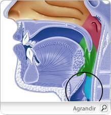 benign cancer symptoms bt toxine
